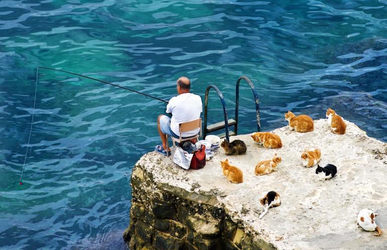 cx5ppn - Мальта для жизни