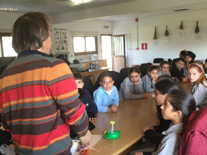 img 1051 - Школы на Кипре
